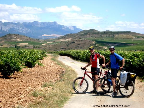 11 Viñas en la Rioja Alavesa